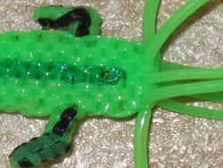 crocodile19